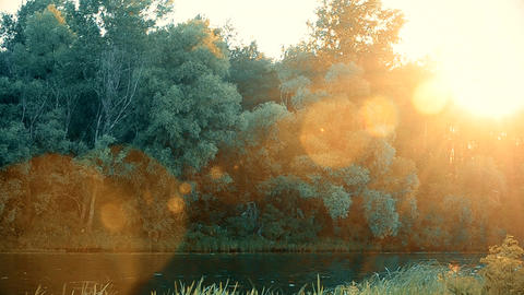 Beautiful sunset over river in summer with lense flare Footage