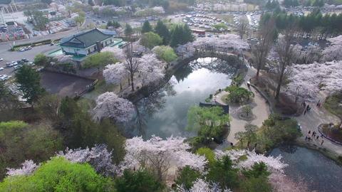 Bomun Pond of Bomun Park at Gyeongju 03 Footage
