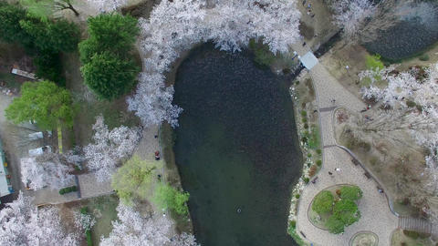 Bomun Pond of Bomun Park at Gyeongju 05 Footage
