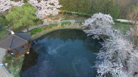 Bomun Pond of Bomun Park at Gyeongju 11 Footage