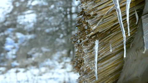 Thaw. Water dripping from wooden thatched shed roof Footage