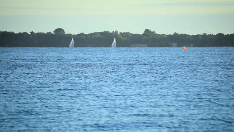 Time lapse of sailboats sailing on water of sea, lake or river Footage