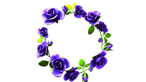Blue roses frame on white text space Animation