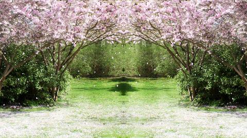 Springtime Garden 2