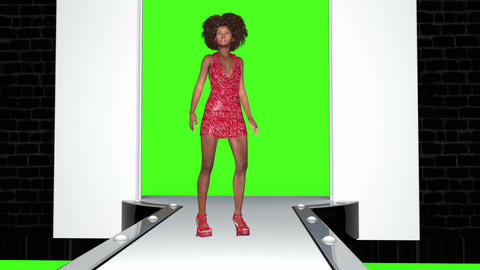Supermodels In The Fashion Show,animation,with A Green Screen Animation