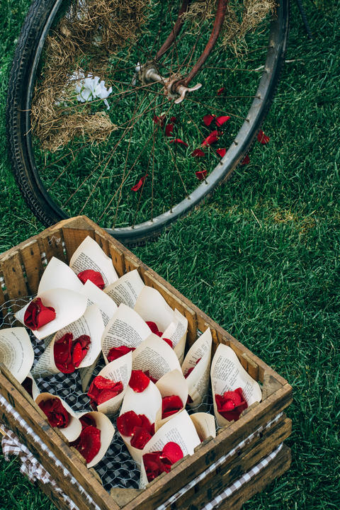 Red Rose Petals and Bike Wheel Fotografía