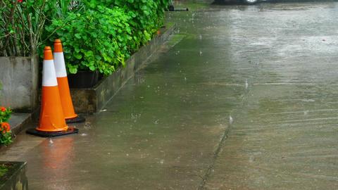 Tropical downpour outdoors Image