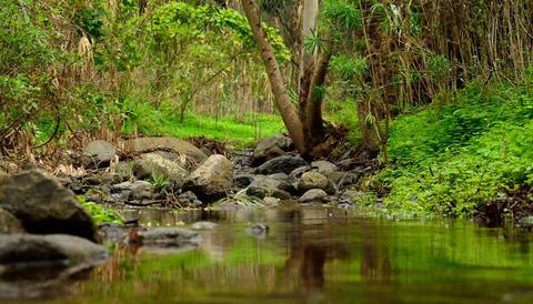 Natural landscape of Gran canaria Fotografía