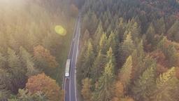Aerial Asphalt Road through the Forest Image