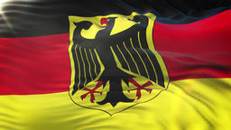 Flag of Germany waving on sun. Seamless loop with highly detailed fabric texture Animation