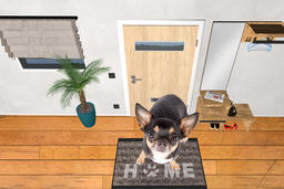 Cute dog chihuahua sit on welcome doormat home Fotografía