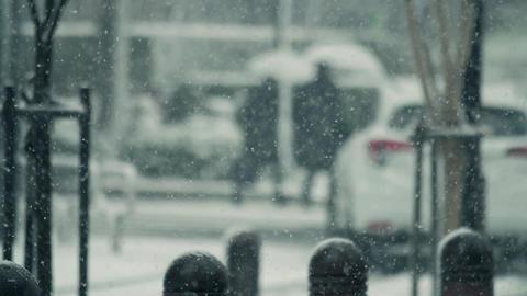 大雪、東京、雪、人物、歩く、ハイスピード、スーパースロー、冬、寒冬、寒波、冬将軍、豪雪、新宿、都市、町、街、人混み、足元、注意、滑る、記録的、積雪、通行止め、路 ビデオ