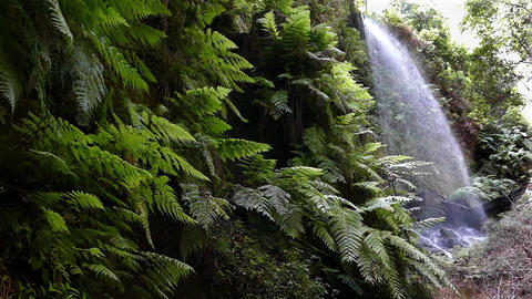 """Waterfall """"The Lindens"""",in Island of La Palma, Canary Islands, Spain. Slow Footage"""
