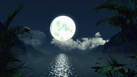 Full Moon Tropical Night Full HD Holographic VJ Loop Animation