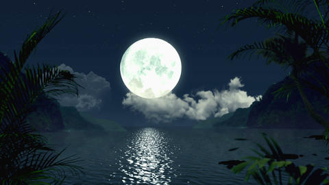 Full Moon Tropical Night Full HD Holographic VJ Loop Stock Video Footage