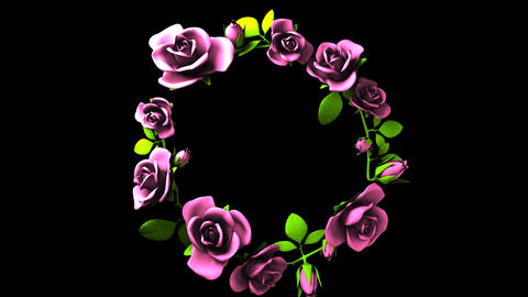 Pink Roses Frame On Black Text Space Animation