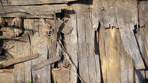 Old wooden background. Wood texture Fotografía