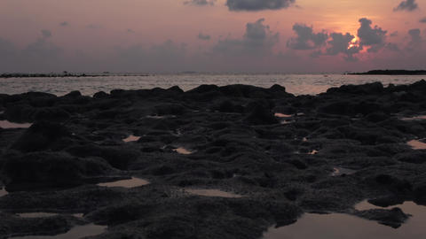 Indian Ocean, reef at low tide. Maldives video Archivo