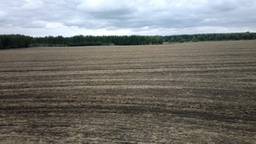 Ploughed, after harrowing field on edge of forest Footage