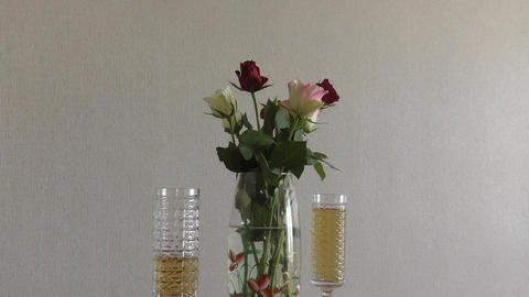 Still life with roses Footage
