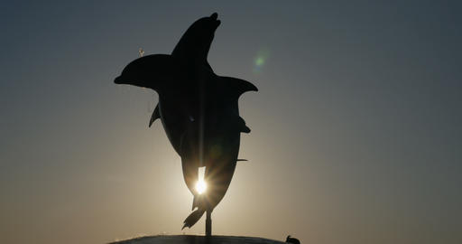 Sun shining through the a dolphin fountain statue at sunset or sunrise Footage
