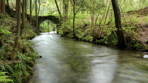 Old rock bridge over Filveda river Image