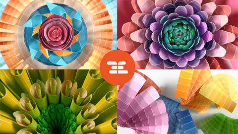 Colorful Logo reveal After Effects Template