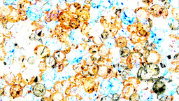 Diamonds viewed through camera negative film Footage