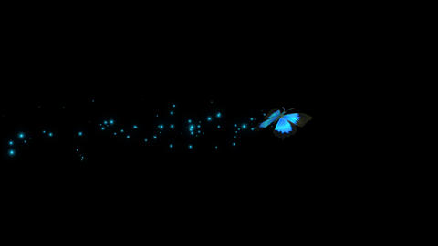 Blue Butterfly Flying Animation 2
