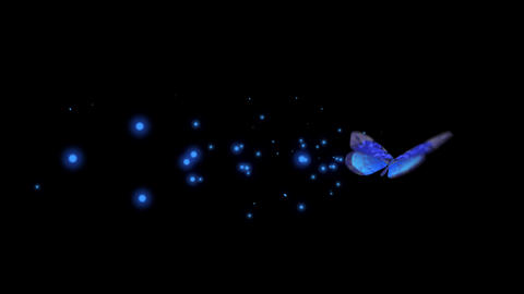 Mosac-blue Butterfly Flying Animation