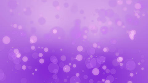 Purple pink bokeh particle background 애니메이션