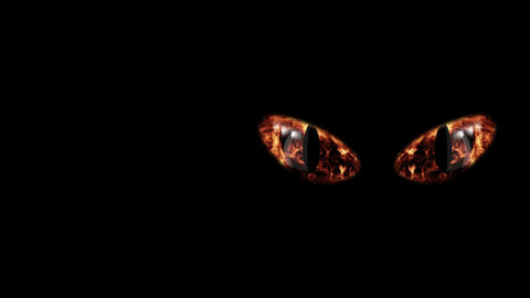 Perilous Flaming Black Cat Eyeballs Animation