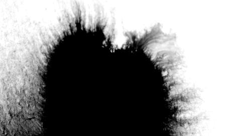 Black Ink Drop Design on White Background Footage
