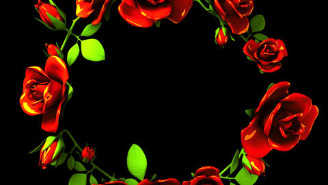 Red Roses Frame On Black Text Space CG動画