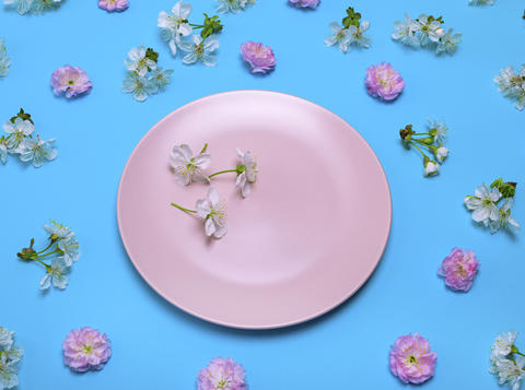 pink plate on a blue background in the midst of flowering buds Photo