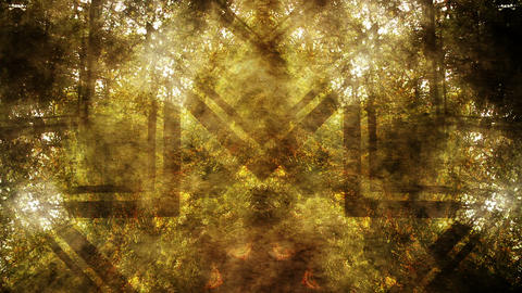 Magical Fantasy Nature 0