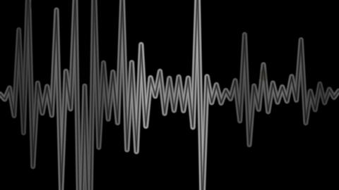 Equalizer Audio Spectrum Balck And White Dynamic Waves Background Animation