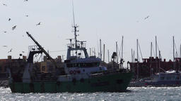 Green fishing ship enters harbor Footage