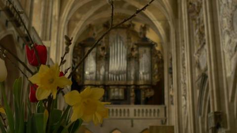 Old Gothic Church Organ Footage