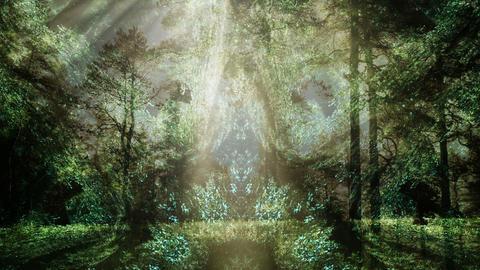 Fantasy Background Animation