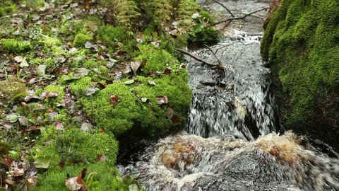 A small waterfall on a creek Footage