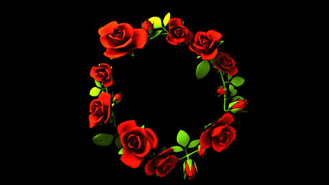 Red Roses Frame On Black Text Space 動畫
