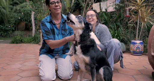 Two women kneeling on the ground and petting their two pet dogs Live Action