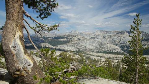 Sierra-Nevada, USA Stock Video Footage