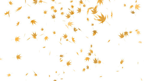 HD Loopable Falling Autumn Leaves Animation Animation