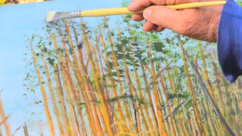 painter Footage