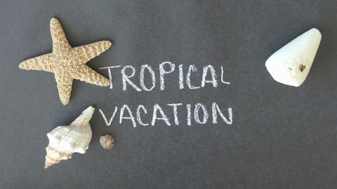 Tropical Vacation Stock Video Footage