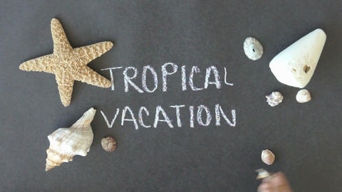 Tropical Vacation stock footage