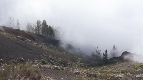 Fog In Mountains Stock Video Footage