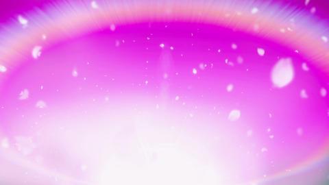 Cheery Blossom Rainbow 01B Stock Video Footage